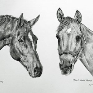 CharlieBoy & Zippo's Jaded Legacy - Horse Pencil Portraits by Angie