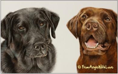 Bella & Bailey - Labrador Retriever Coloured Pencil Portrait by Angie x