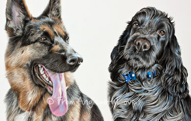 Jerri-Lee & Barney - Coloured Pencil Dog Portraits by Angie x