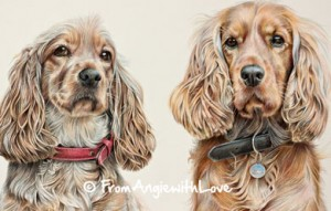 Lizzie & Harry - Cocker Spaniel Coloured Pencil Portrait by Angie