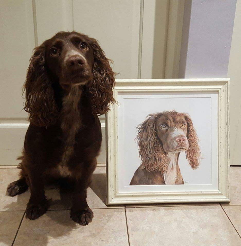 Cocker Spaniel Tilley with her portrait.