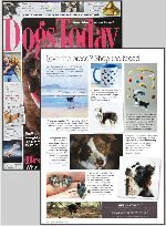 Dogs Today Magazine September 2016