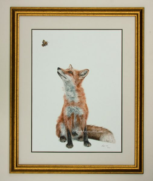 Fluttering Heights - Limited Edition Fox Wildlife Art Print. Antique Gold Effect Frame with White/Black Mount