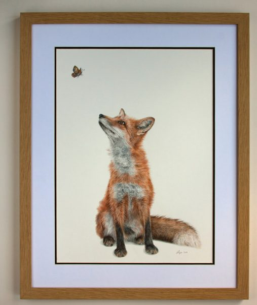 Fluttering Heights - Limited Edition Fox Wildlife Art Print. Oak Frame with White/Black Mount