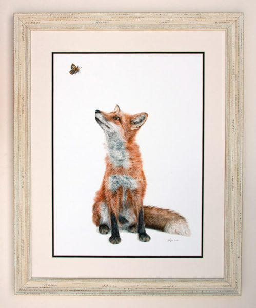 Fluttering Heights - Limited Edition Fox Wildlife Art Print. Distressed White Frame with White/Black Mount.
