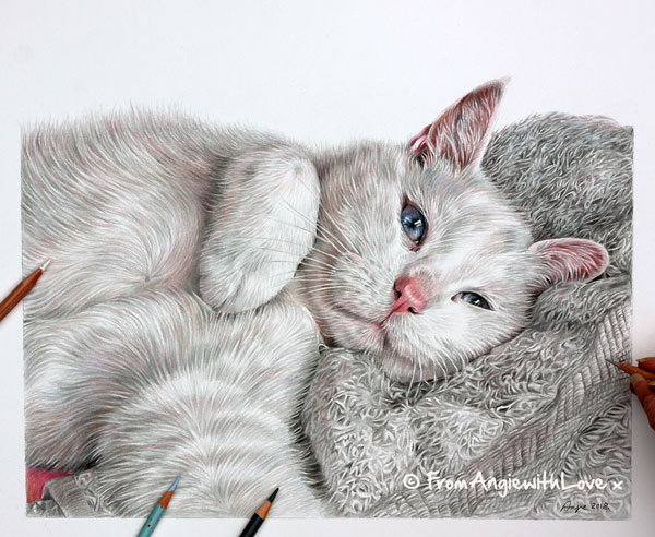 Nemo - Coloured Pencil White Cat Portrait by Angie x