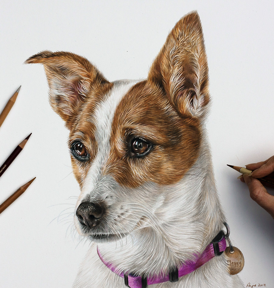 Choosing a photo for your portrait - Meggy's coloured pencil portrait