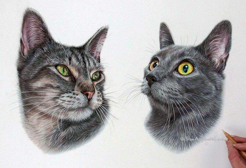 Double cat portrait in pastel by pet and wildlife artist Angie