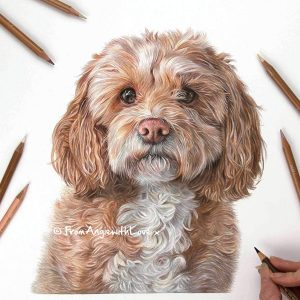 Darcy - Cockapoo Portrait by Pet & Wildlife Artist Angie x